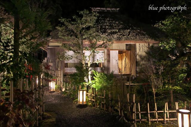 arasiyama4.jpg